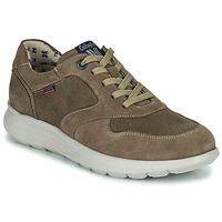 Pantofi Bărbați Pantofi sport Casual CallagHan WASSER Bej