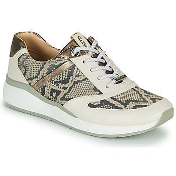 Pantofi Femei Pantofi sport stil gheata JB Martin 1KALIO Bej