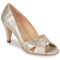 Pantofi Femei Pantofi cu toc Betty London OCHINA Argintiu