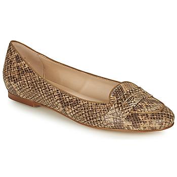 Pantofi Femei Balerin și Balerini cu curea Betty London OVINOU Taupe