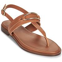 Pantofi Femei Sandale  Minelli LIZA Maro