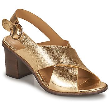 Pantofi Femei Sandale  Minelli THIVIYA Auriu