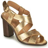 Pantofi Femei Sandale  Minelli THIYA Auriu