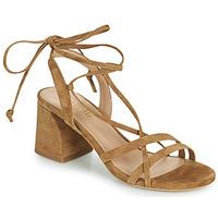 Pantofi Femei Sandale  Minelli TATIA Maro