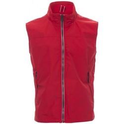 Îmbracaminte Bărbați Jerseuri și Cardigane Payper Wear Sweatshirt Payper Horizon R. 2.0 rouge