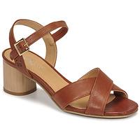Pantofi Femei Sandale  Dream in Green ODAINE Tan