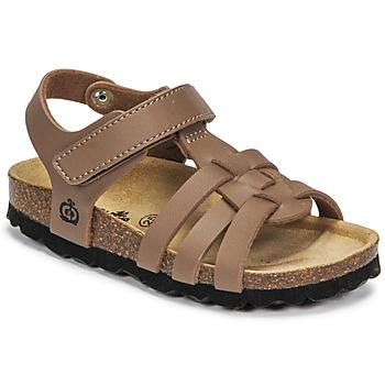 Pantofi Băieți Sandale  Citrouille et Compagnie JANISOL Maro / Taupe