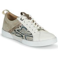 Pantofi Femei Pantofi sport Casual JB Martin GELATO Gri / Alb