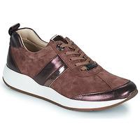 Pantofi Femei Pantofi sport Casual JB Martin KAP Powder