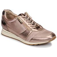 Pantofi Femei Pantofi sport Casual JB Martin VERI Blush