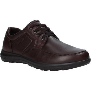 Pantofi Bărbați Pantofi Derby Enval 6216222 Maro
