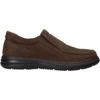 Pantofi Bărbați Pantofi Slip on Enval 6209222 Maro
