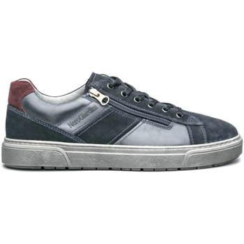 Pantofi Bărbați Pantofi sport Casual Nero Giardini I001750U Albastru