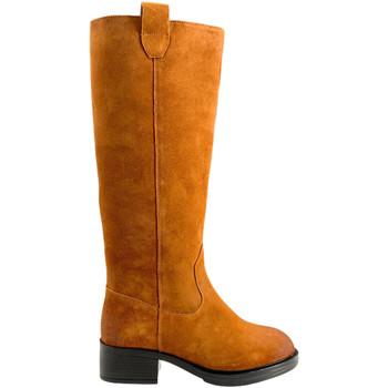 Pantofi Femei Cizme casual Apepazza F0BEATRIX02/SPL Maro