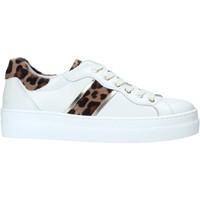 Pantofi Femei Pantofi sport Casual Nero Giardini I013230D Alb