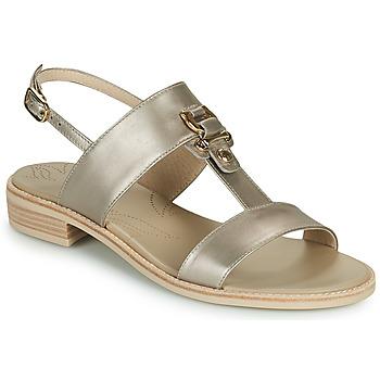 Pantofi Femei Sandale  NeroGiardini PLUIE Auriu