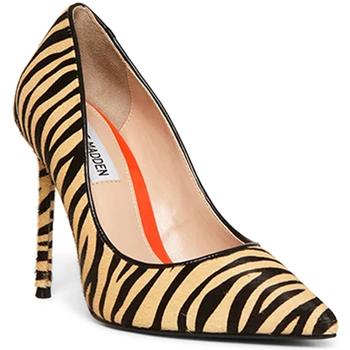 Pantofi Femei Pantofi cu toc Steve Madden SMSVALAL-TIG Negru
