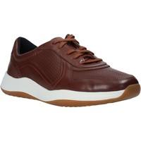 Pantofi Bărbați Pantofi sport Casual Clarks 148125 Maro