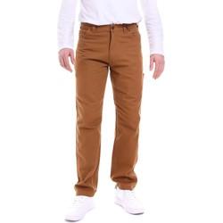 Îmbracaminte Bărbați Pantaloni  Dickies DK121172BD01 Maro