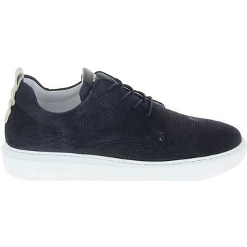 Pantofi Bărbați Pantofi sport Casual Schmoove Bump Suede Print Bleu albastru