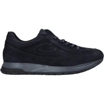 Pantofi Bărbați Pantofi sport Casual Alberto Guardiani AGM004800 Albastru