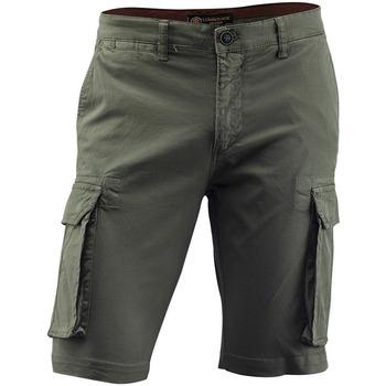 Îmbracaminte Bărbați Pantaloni  Lumberjack CM80747 005 602 Verde