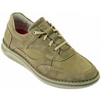 Pantofi Bărbați Pantofi sport stil gheata Zen  Multicolor