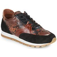 Pantofi Femei Pantofi sport Casual JB Martin GLOIRE Maro