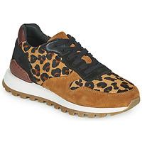 Pantofi Femei Pantofi sport Casual JB Martin HABILLE Maro