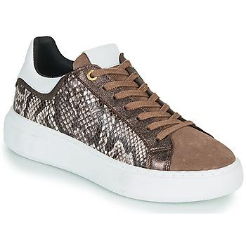 Pantofi Femei Pantofi sport Casual JB Martin HIBISCUS Maro