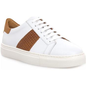 Pantofi Bărbați Pantofi sport Casual Soldini COLORADO BIANCO CUOIO Bianco