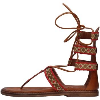 Pantofi Femei Sandale  Zoe INCAS05 BROWN