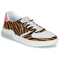 Pantofi Femei Pantofi sport Casual Coach CITYSOLE COURT Multicolor
