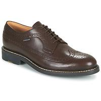 Pantofi Bărbați Pantofi Derby Pellet NORMAN Maro
