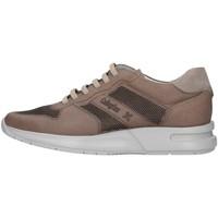 Pantofi Bărbați Pantofi sport Casual CallagHan 91314 BEIGE