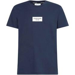 Îmbracaminte Bărbați Tricouri mânecă scurtă Calvin Klein Jeans K10K106484 Albastru