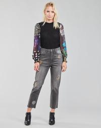 Îmbracaminte Femei Jeans drepti Desigual LAGUN Gri