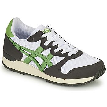Pantofi Pantofi sport Casual Onitsuka Tiger ALVARADO Verde / Negru / Alb