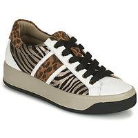 Pantofi Femei Pantofi sport Casual IgI&CO DONNA AVA Alb / Maro