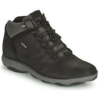 Pantofi Bărbați Ghete Geox NEBULA Negru