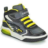 Pantofi Băieți Pantofi sport stil gheata Geox INEK Gri / Verde