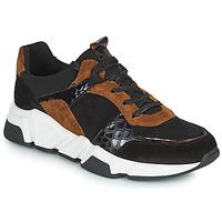 Pantofi Femei Pantofi sport Casual Regard KENO Negru / Maro