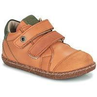 Pantofi Băieți Pantofi sport stil gheata Aster WASHAN Camel / Verde