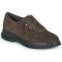 Pantofi Femei Pantofi sport Casual Scholl BRISTOL ZIP Maro