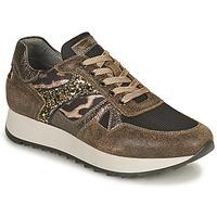 Pantofi Femei Pantofi sport Casual NeroGiardini AVOCATO Kaki / Leopard