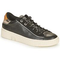 Pantofi Femei Pantofi sport Casual Palladium Manufacture TEMPO 04 SYN Negru