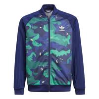 Îmbracaminte Băieți Bluze îmbrăcăminte sport  adidas Originals HARRA Multicolor