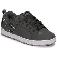 Pantofi Bărbați Pantofi de skate DC Shoes COURT GRAFFIK Gri / Negru