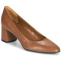 Pantofi Femei Pantofi cu toc Betty London  Coniac