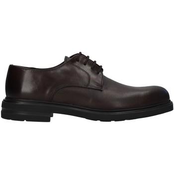 Pantofi Bărbați Pantofi Derby Antony Sander 720 BROWN
